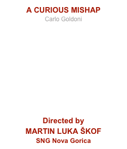 A CURIOUS MISHAP